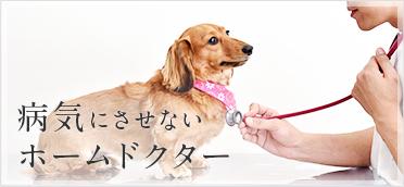 病気にさせないホームドクター